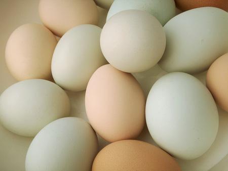 Gan nhiễm mỡ có ăn trứng được không ? 1